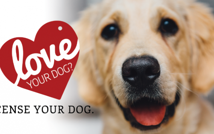 Love Your Dog - License Your Dog